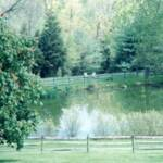 178-Sitting by the Pond, PA